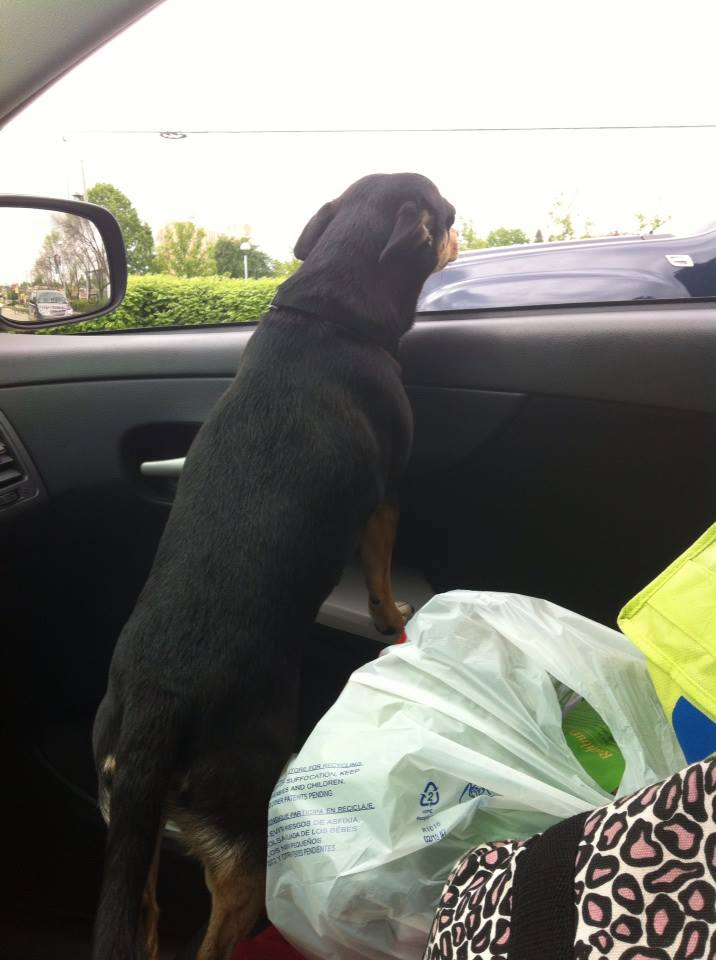 Car ride?!